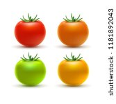 tomato colorful isolated on... | Shutterstock .eps vector #1181892043