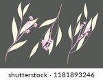 rustic decorative plants...