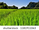 the beautiful area of hpa an | Shutterstock . vector #1181911063