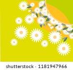 bright chamomile. summer...   Shutterstock .eps vector #1181947966