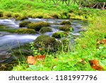 mountain stream among the mossy ... | Shutterstock . vector #1181997796