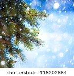 Christmas Tree Branch On A Blu...