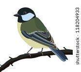 tit bird sitting on a tree... | Shutterstock .eps vector #118204933