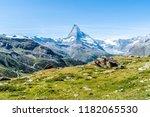 beautiful mountain landscape... | Shutterstock . vector #1182065530