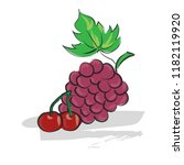 hand drawn vector of grapes and ... | Shutterstock .eps vector #1182119920
