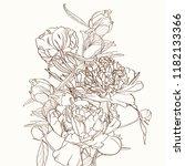 peonies bouquet brown sepia... | Shutterstock .eps vector #1182133366