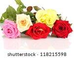 Beautiful Colorful Roses...
