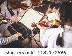 Girl Students Playing Violin I...