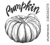 pumpkin vegetable hand drawn... | Shutterstock .eps vector #1182262273