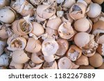 beautiful eggshells background... | Shutterstock . vector #1182267889