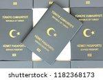 Turkish Gray  Service Passport...