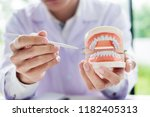 concentrated dentist sitting at ... | Shutterstock . vector #1182405313