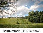 green field under blue sky with ... | Shutterstock . vector #1182524569