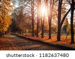 small fog is in autumn in a... | Shutterstock . vector #1182637480