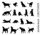 Set Of Labrador Retriever...