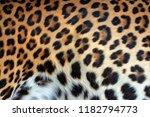 Real Leopard Skin Fur Texture...