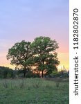 summer landscape with village   Shutterstock . vector #1182802870