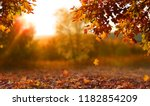 Beautiful Autumn Landscape Wit...