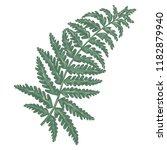 art watercolor natural fern... | Shutterstock .eps vector #1182879940
