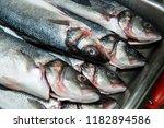 fresh salmon in a bin waiting... | Shutterstock . vector #1182894586