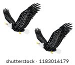 cartoon stylized bald eagle... | Shutterstock .eps vector #1183016179
