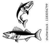 Walleye Fish Sign On White...