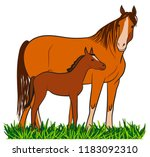 horse with foal on grass. ... | Shutterstock .eps vector #1183092310
