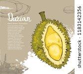 durian vector illustration.... | Shutterstock .eps vector #1183142356