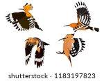 flying cute bird. vector image. ...   Shutterstock .eps vector #1183197823