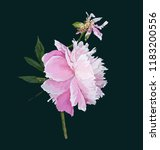 a picturesque peony flower.... | Shutterstock .eps vector #1183200556