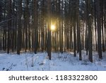 dawn in the winter snowy forest ...   Shutterstock . vector #1183322800