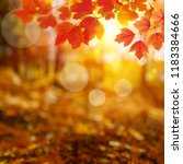 autumn leaves on the sun and... | Shutterstock . vector #1183384666