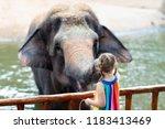 family feeding elephant in zoo. ... | Shutterstock . vector #1183413469