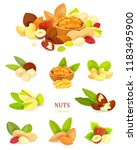 collection of colorful nuts on... | Shutterstock .eps vector #1183495900
