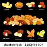 collection of colorful nuts on... | Shutterstock .eps vector #1183495909