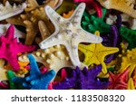 assorted starfish dried and... | Shutterstock . vector #1183508320