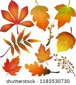 miscellaneous autumn colorful ... | Shutterstock . vector #1183530730