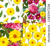 set with seamless patterns with ... | Shutterstock .eps vector #1183547236
