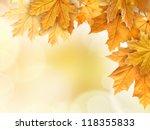 autumn leaves background | Shutterstock . vector #118355833