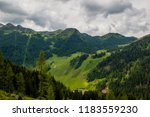 mountain forest in austrian alps | Shutterstock . vector #1183559230