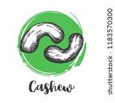 cashew nuts vintage hand... | Shutterstock .eps vector #1183570300