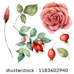 watercolor set with autumn... | Shutterstock . vector #1183602940