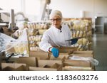 young female employee in... | Shutterstock . vector #1183603276