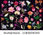 beautiful different flowers in... | Shutterstock .eps vector #1183654243