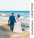cheerful married couple at... | Shutterstock . vector #1183675540