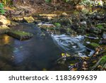autumn river nature   Shutterstock . vector #1183699639