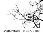 tree branches abstract... | Shutterstock . vector #1183770400