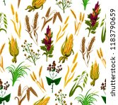 grains and cereals pattern... | Shutterstock .eps vector #1183790659