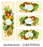 exotic tropical fruits  farm... | Shutterstock .eps vector #1183795933
