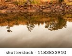 early morning view of waterway... | Shutterstock . vector #1183833910